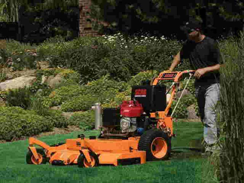 Commercial Maintenance Landscaping Services In