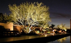 Landscape Lighting1 300x185 Outdoor  Lighting