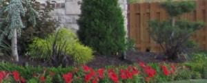 jpg 300x121 Bark,Mulch,Compost